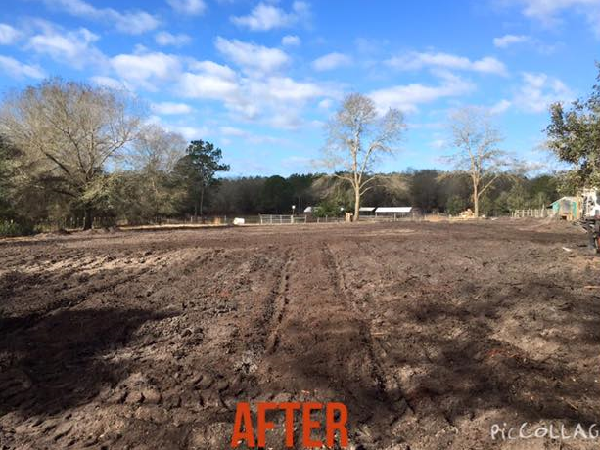Stump Removal - Keystone Heights - Middleburg - St. Augustine - Gainesville - Starke - Palatka - Northeast Florida - Odom Ranch